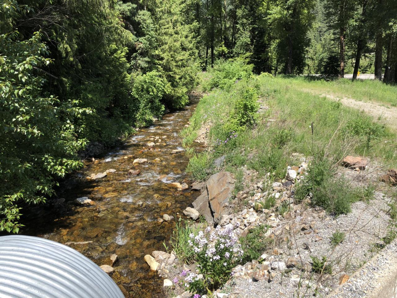 NKA Silver Valley Road - Photo 1