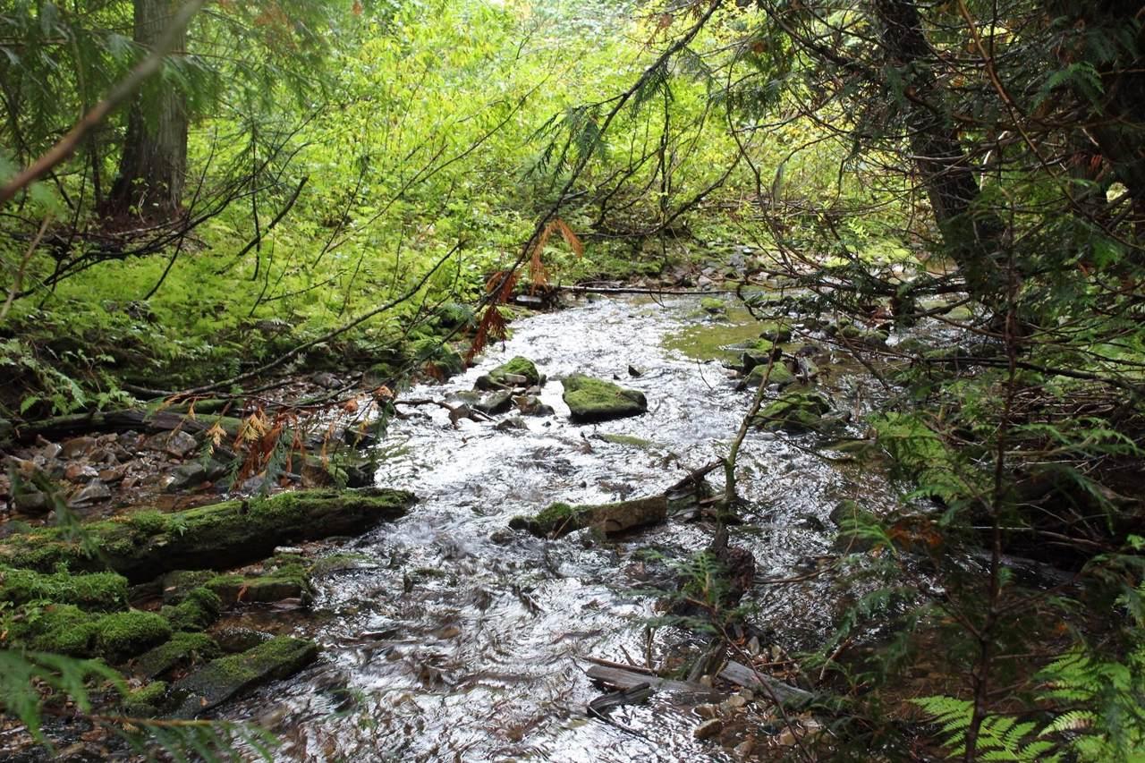 40A Loop Creek Road - Photo 1