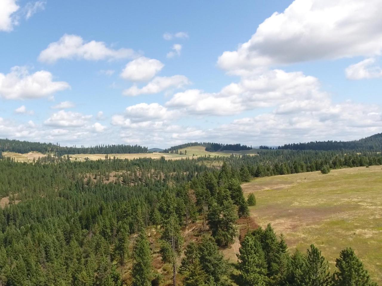 1082 Canyon Ridge Drive - Photo 1
