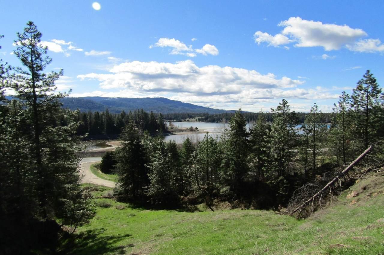 25 Pine Leaf Road - Photo 1