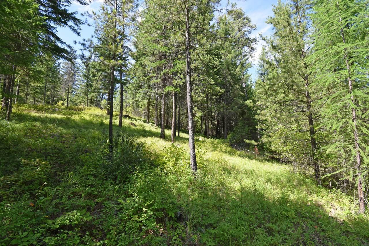 NNA Meadow Creek Rd - Photo 1