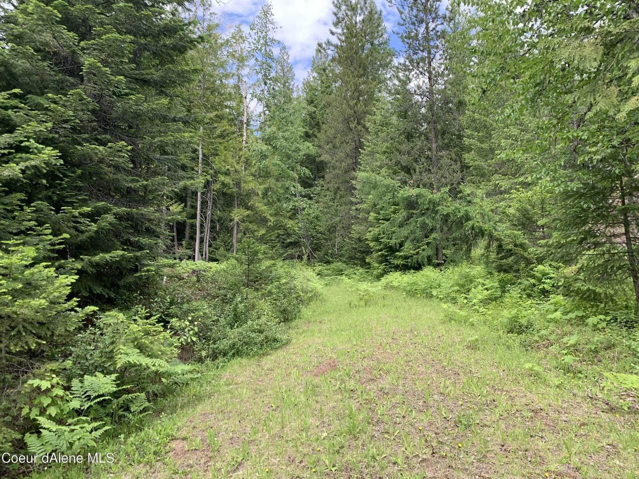 NNA Gold Creek Ridge Road - Photo 1