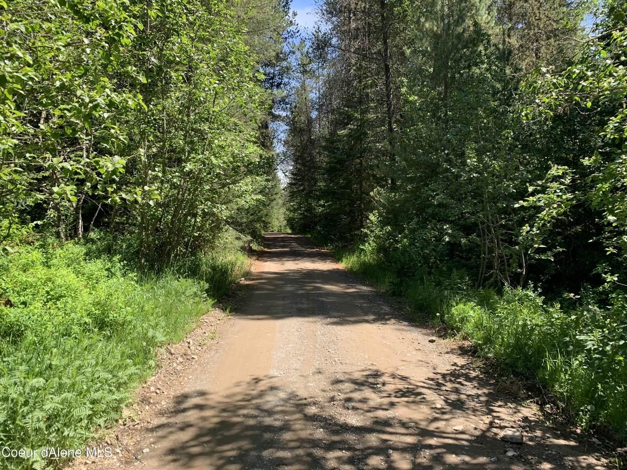 NNA Pup Paw Trail - Photo 1