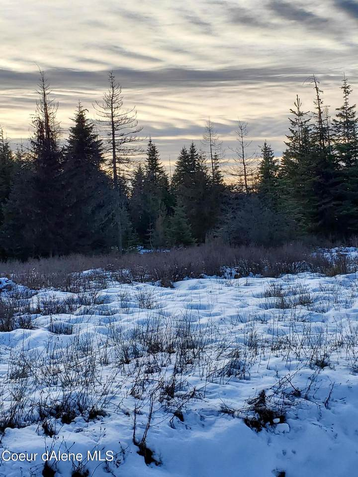 Hidden River Vistas Tract 4 - Photo 1