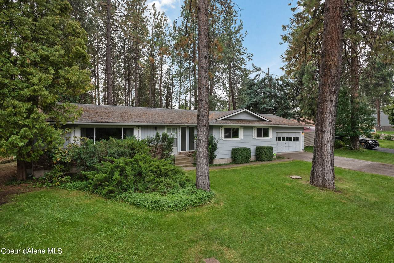11779 Forest Rd - Photo 1