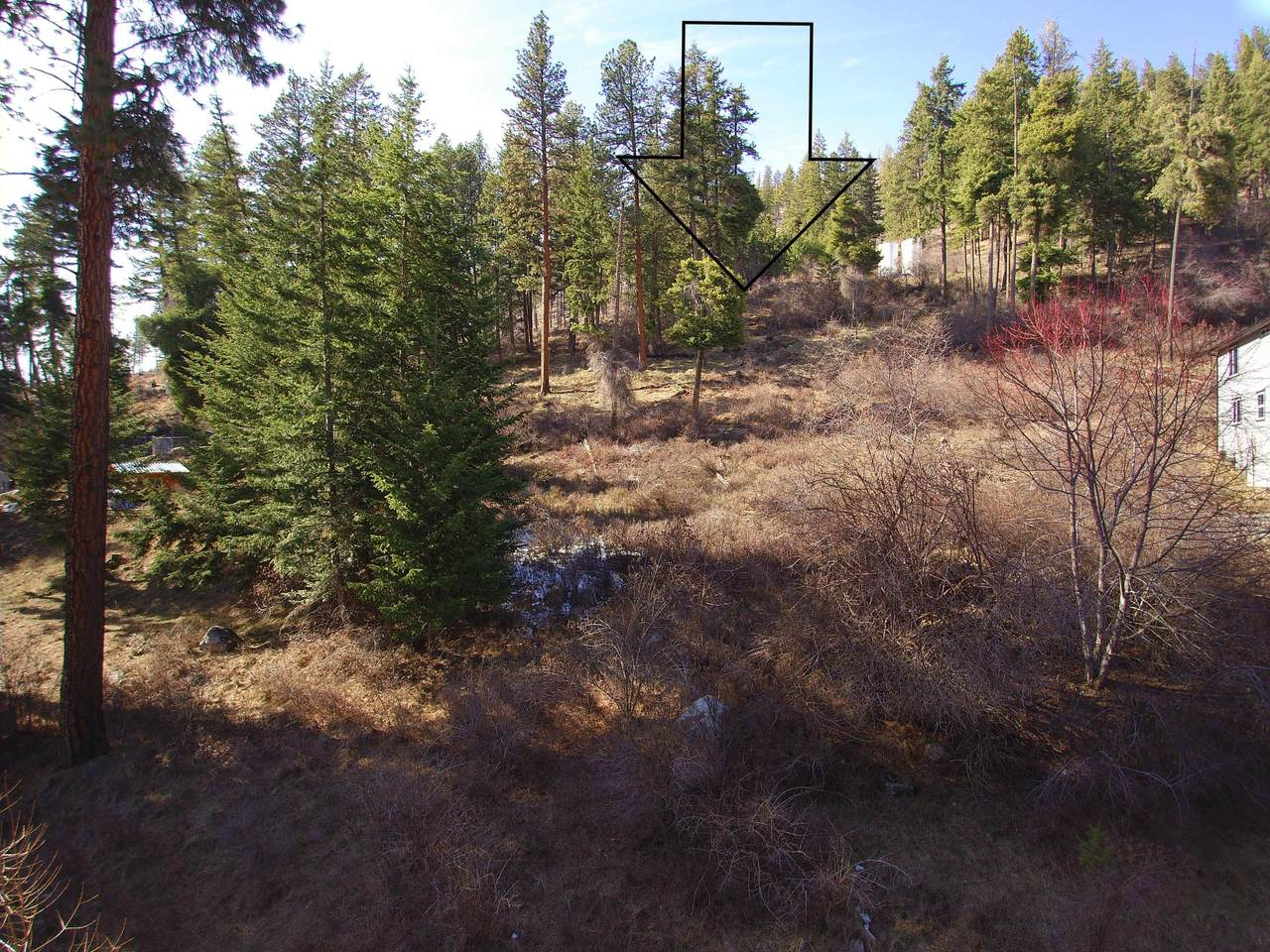 NKA Glacier Loop Rd - Photo 1