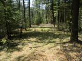 NKA 40 Acres Canary Cr. Rd. - Photo 1
