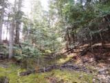 NKA Junco Trail, Lt 18-22 - Photo 1