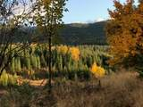 108 Prospector Loop - Photo 1