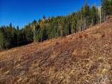 1197 Brown Creek Rd - Photo 19