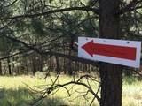 L3 B1 Cable Creek Dr - Photo 6