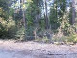 NKA Forest Dr - Photo 1