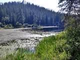 NKA Kelso Lake Rd. - Photo 1