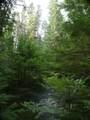 NAA Pokey Creek (Not The Road) - Photo 1