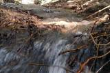 337 Coon Creek Rd - Photo 38