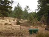2475 Shay Hill Road - Photo 10