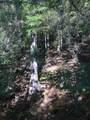 NKA Forestview Ln - Photo 8