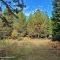 1006 Sitting Bull Rd - Photo 13