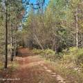 1006 Sitting Bull Rd - Photo 4
