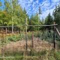 1006 Sitting Bull Rd - Photo 6