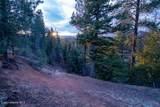 875 Wilderness Rd. - Photo 34
