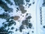 NNA Blizzard Blk 6 Lot 16 - Photo 7