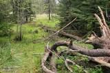 NNA Lower Mud Gulch Rd - Photo 30