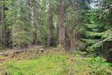 NNA Lower Mud Gulch Rd - Photo 31