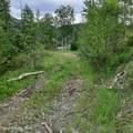 Polaris Peak Road - Photo 3