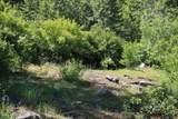 5a Elk Loop - Photo 16