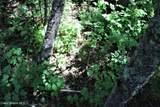 5a Elk Loop - Photo 17