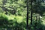5a Elk Loop - Photo 3
