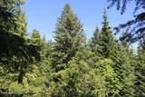 5a Elk Loop - Photo 4