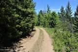 5a Elk Loop - Photo 7