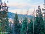 15433 Rustic Ridge Trl - Photo 10