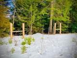 15433 Rustic Ridge Trl - Photo 24