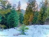 15433 Rustic Ridge Trl - Photo 50