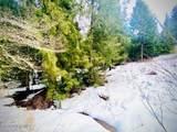 15433 Rustic Ridge Trl - Photo 58