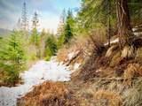 15433 Rustic Ridge Trl - Photo 61