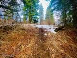 15433 Rustic Ridge Trl - Photo 65
