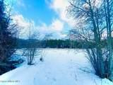 15433 Rustic Ridge Trl - Photo 67