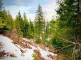 15433 Rustic Ridge Trl - Photo 77