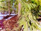 15433 Rustic Ridge Trl - Photo 81
