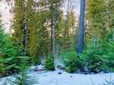 15433 Rustic Ridge Trl - Photo 83