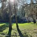 Vets Rd - Photo 3