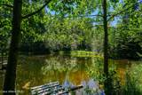 2227 Flume Creek Rd. - Photo 32