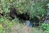 NNA Coyote Trail - Photo 1