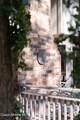 11895 Amethyst Dr - Photo 57