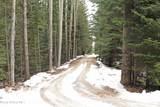 310 Alpine Place - Photo 47