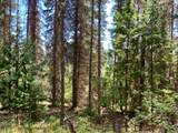 NNA Lot 7 Kalispell Bay Rd - Photo 6